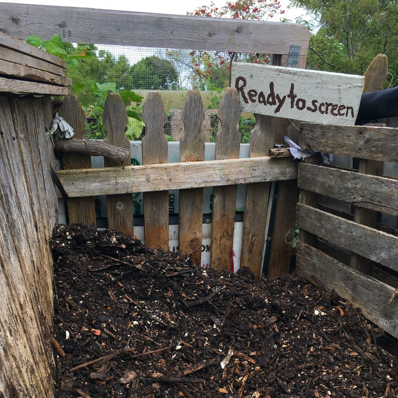 """Pile of finished compost next to a sign that reads """"Ready to Screen""""."""